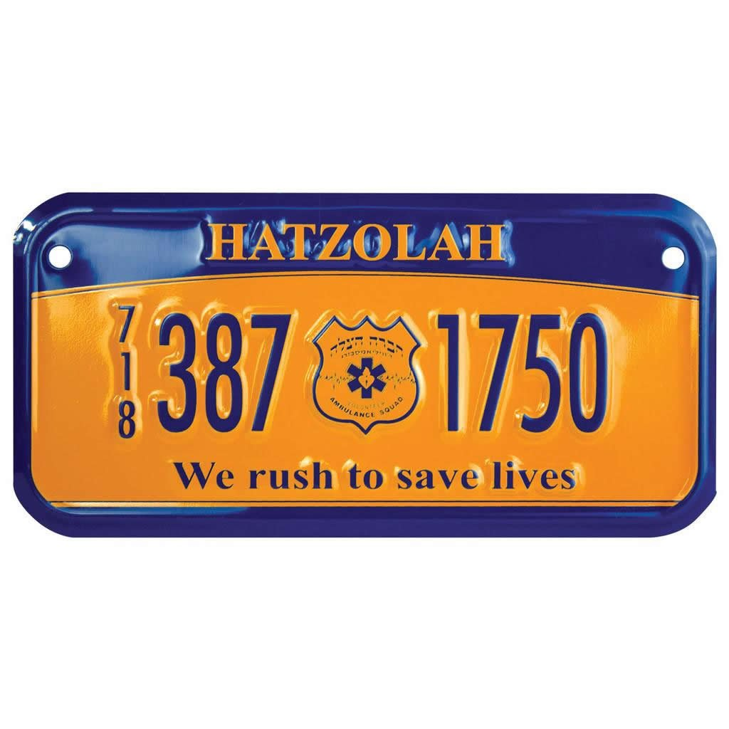 Custom Bicycle License Plates - 3